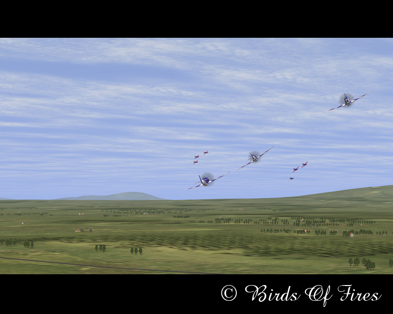 Birds Of Fire's BirdsOfFires11