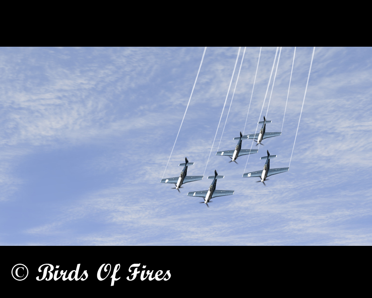 Birds Of Fire's Birdsoffires0062